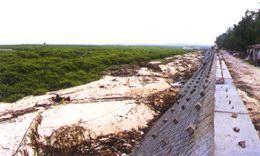 广西自治区重点建设的II级海堤