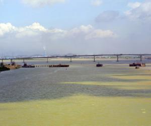 广珠城际轨道交通工程江门支线西江特大桥(在建)